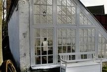 Glass Houses / A special place for me, the hot house, the glass house, the greenhouse, the house where I spent my winter days as a child observing nature in action