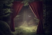 """A Fairy Tale /  """"Some day you will be old enough to start reading fairy tales again.""""  ― C.S. Lewis"""