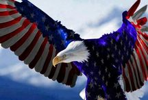 Patriot Games / Celebrating American patriotism, past and present.  / by Steve Parker