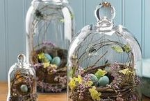 Cloches, my new favorite! / by Jan Hopkins
