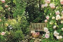 """~The Secret Garden~ / """"Where you tend a rose my lad, a thistle cannot grow."""""""