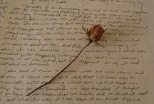 """~A Rose for Emily~ / """"...in the second pillow was the indentation of a head. One of us lifted something from it, and leaning forward, that faint and invisible dust dry and acrid in the nostrils, we saw a long strand of iron-grey hair."""""""