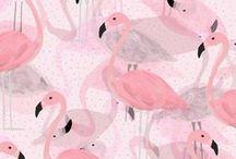 do flaminga