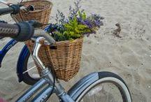 Wheelbarrows & wagons & bicycles