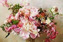 Floral / by Jessica Delgado