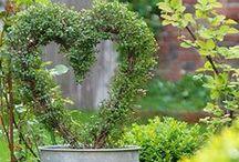 Hearts, Wreaths & Stars