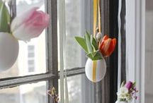 Easter / recipes, crafts, gifts, and decorations to celebrate Easter / by Quicken Loans