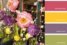 Color Combinations to Try