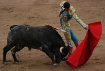 SPAIN / Europe   Iberia   Travel   Places   People   Culture   Food   Sites   ESPAÑA / by Tere Sa