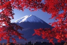 JAPAN / Asia | Travel | Places | Sites | History | People | Culture | Food | Tips