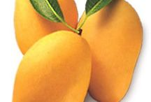 FRUITS & VEGETABLES / Nature