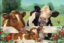 Had A Cow / by Deborah Robbins