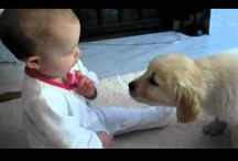Dogs and Kids / by Joan Halbig