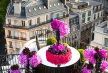 Springtime in Paris.... / Paris is always a good idea...no matter the season but especially in Spring!