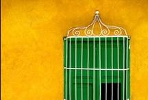 Calles, Fachadas, Puertas, Ventanas...  / by CubaTravel