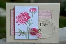 stampin up / by Susan Hall