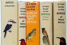 Birding...My Life List of Birds / Locations refer to where I actually first saw the bird and/or regular sightings