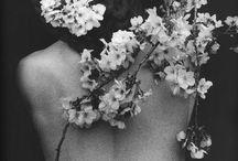heavenly / by Julia Kostreva