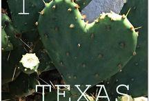 Texas!!!