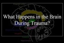 DID/C-PTSD: The Brain / All things brain: right/left brain; amygdala and fear response; brain-based learning; changes caused by trauma.