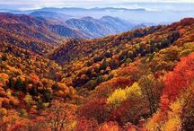 Appalachia-My home / by Katherine Bolling Kennedy