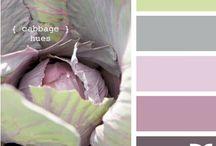 Colour / by Barbara Hellinga