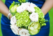 Green + White Flowers / Green and white wedding flowers Classic color combinations