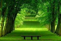 Dream Places & Spaces
