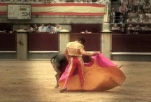 Videos about Bullfighting