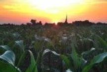 Sunrises/ Sunsets / Capturing sunrises and sunsets across rural America.