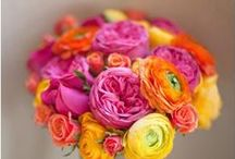 Hot Pink, Orange and Yellow Flowers / Hot pink, orange and yellow wedding flowers Classic color combinations