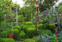 Boxwood Cottage Garden