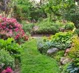 Garden Design / See our most inspiring gardens, easy step-by-step landscaping projects, plant lists, and more