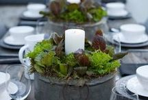 Pretty table scapes/ table settings / for all seasons and occasions