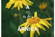 Remedy ABCs / Natural remedies A-Z to help you sustain a good and healthy life! xoxo MP