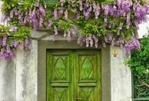 Doors, Gates and Windows / by Trish Parker