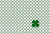 St. Paddy's Day / by Erin Sutch