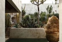 Outdoor // Garden / by Kim Winkelman