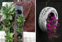 Ideas for the Garden / Great ideas and tips for your garden / by FarmGirl