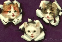 Vintage Kitties / Vintage Cat & Kitten figures, postcards, images ect.. / by Storm Nyte