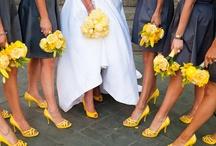 Wedding Board / Really Cute Wedding Stuff :) / by Jamie Tobar