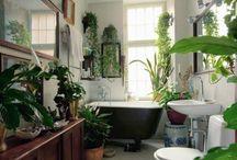 Bathroom / by April Ward