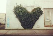 Street Love Δ / Non coincidental love from the street