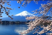 Japan / Japan is open for travel! There's no better Asian destination to satisfy your travel desires for rich culture, vibrant colour, delicious cuisine, natural beauty and buzzing world class cities. Japan has it all. Be prepared to be amazed and inspired to return again and again.    / by travel.com.au