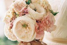 Weddings & Weddings