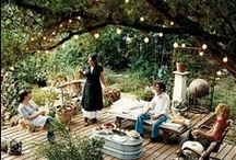 Backyard / by Carol Dial