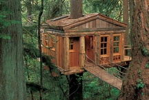 Tree Houses / by travel.com.au