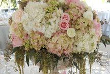 Wedding fun / by Brittney Oden