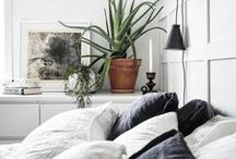 Square Fox   bedroom styling