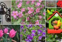 Gardening by Anthomeli